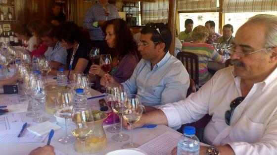 """Especialistas del sector vinícola califican de """"excelente"""" la cosecha 2011 de la DO Arribes"""